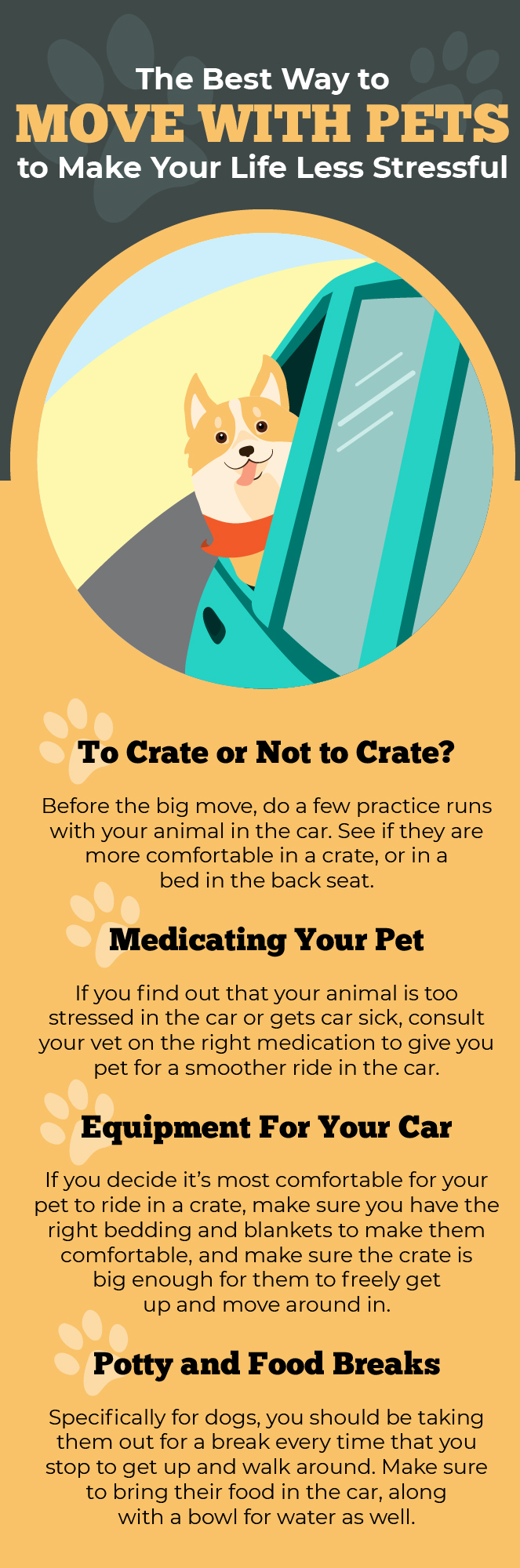 The Best Ways to Move with Pets